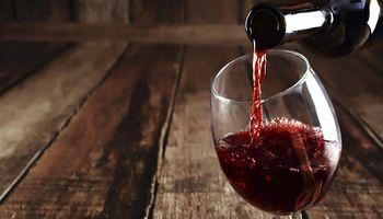 """Crece la producción de vinos argentinos """"en armonía con la naturaleza"""""""
