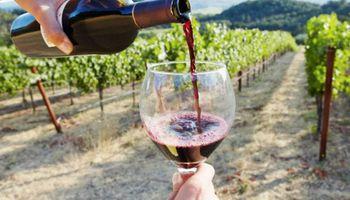 """Los vinos que utilicen el sello """"Alimento Argentino"""" tendrán un reintegro adicional por exportaciones"""