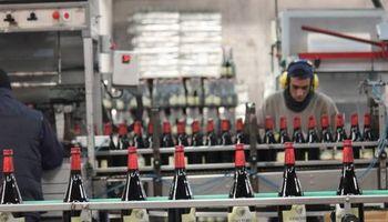 Vinos: una cooperativa invierte $ 16 millones en una planta de envasado