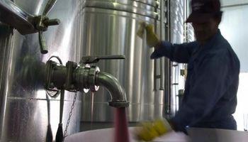 """Importación de vinos: """"No se trata de perjudicar al productor sino de abastecer al mercado interno"""""""