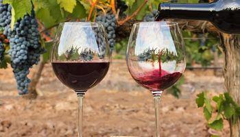 Conflicto en la vitivinicultura: bodegas se niegan a pagar el aporte a la COVIAR y solicitan intervención del Gobierno