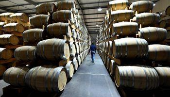 En medio de la peor caída mundial de vino, sube la producción argentina