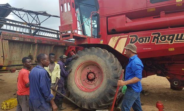 Buscan profesionales del agro para ir a trabajar a Sierra Leona: qué requisitos hay