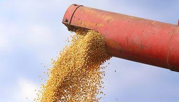 El precio de la soja volvió a subir a la espera de datos claves que serán publicados mañana