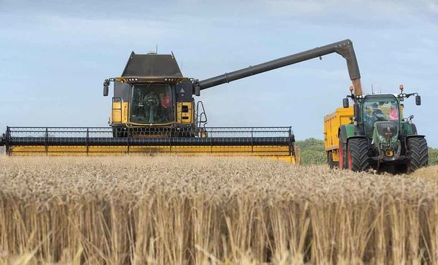 Stocks, rindes y cosecha: los datos relevantes del informe del USDA para soja, trigo y maíz