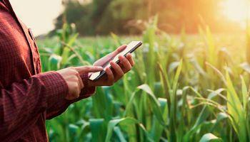 Digitalización en el agro: Agrofy, Mercado Libre y el Ministerio de Agricultura se reúnen para compartir experiencias