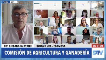 Tras un empate técnico, se frenó en Diputados la creación de un Observatorio Nacional de Agroquímicos: cómo votó cada partido