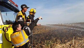 Investigan las causas detrás de un incendio que arrasó con 25 hectáreas de soja