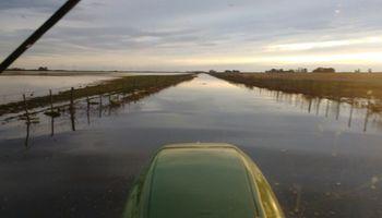 Relevarán la situación de los productores de Trenque Lauquen cuyos campos están inundados