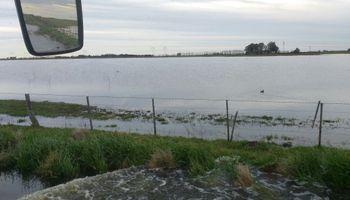 Mirá cómo quedaron los campos después de la tormenta