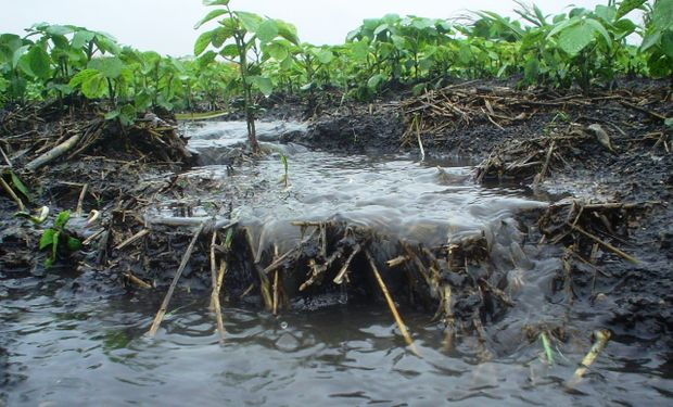 En una década el suelo del lote disminuye su capa fértil en un total de 6 centímetros, generando una daño irreparable para la producción.