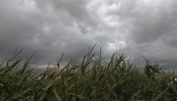 Las lluvias se apoderan de la zona central