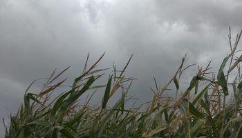 Alerta del SMN por tormentas fuertes para la región centro