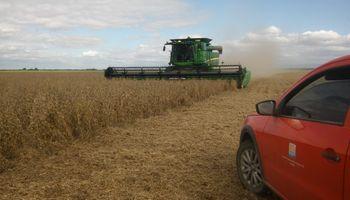Recomendaciones para reducir pérdidas en la cosecha de la campaña gruesa