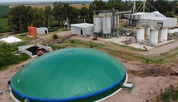 Granos, ganado, gas y fertilizantes: la súper fórmula de esta estancia cordobesa