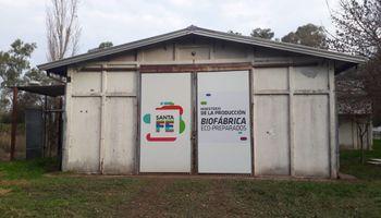 Fertilizantes y pesticidas ecológicos: qué son las biofábricas