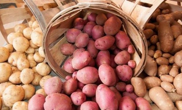 El Senasa prorrogó el vencimiento de las habilitaciones para embalajes de maderas y empaque de tubérculos