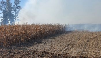 Productores repudiaron el incendio intencional en el campo del vicepresidente de CRA