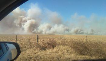 Denuncian un incendio en el campo del presidente de la Sociedad Rural Río Cuarto