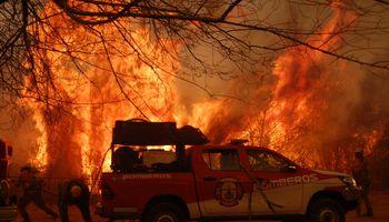 """Incendios en Córdoba: la situación es """"desesperante"""" y hay grandes pérdidas de animales"""