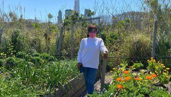 Huerta: empezaron en el patio de una villa porteña y ahora venden sus verduras a un hotel 5 estrellas