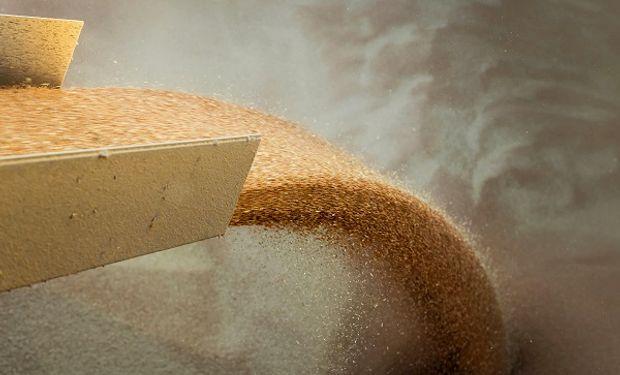 Vietnam y Rusia están en discusiones por temas sanitarios y hay una oportunidad para el trigo de la Argentina.