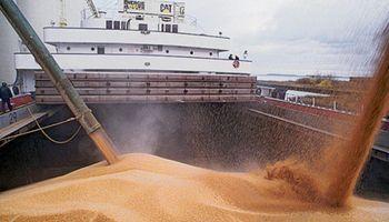 El Gobierno inició gestiones por la decisión de Brasil de abrir el mercado de trigo