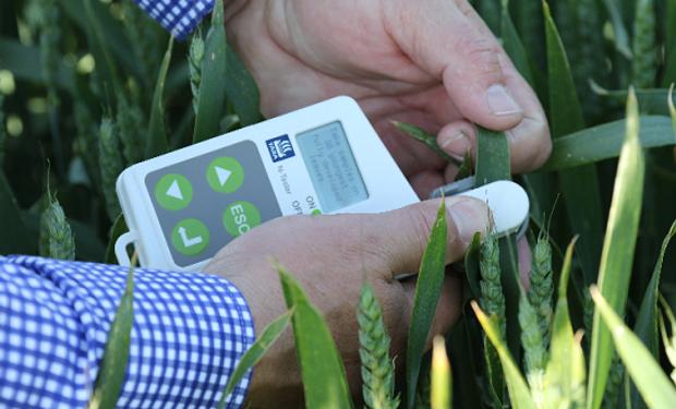 El TCPlus es una herramienta clave para aquellos productores que están planificando lograr altos rendimientos en los cultivos de trigo y cebada