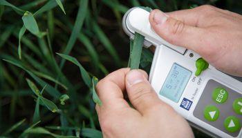 En la previa al Día de los Fertilizantes, qué rol tienen para alcanzar el objetivo de Hambre Cero 2030