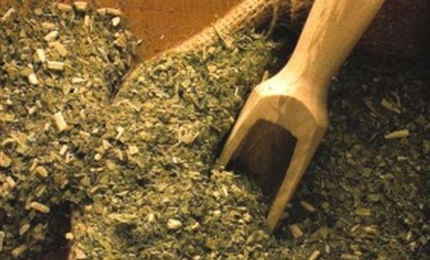 La yerba aumentó 50% y ya se vende a más de 30 pesos el kilo