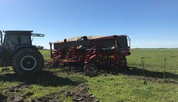 Hicieron falta 2 tractores, 6 hombres y varios intentos para sacar una sembradora
