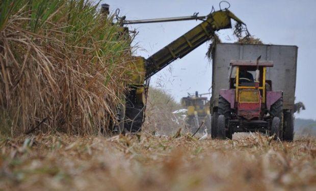 La industria presentó la zafra y detalló los números para cubrir la demanda de bioetanol y azúcar