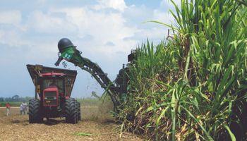 A pesar de la incertidumbre por la Ley de Biocombustibles, el NOA comenzará la zafra y producirá bioetanol