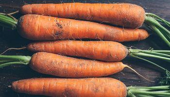 Reutilizan los desechos de zanahoria para producir bioetanol